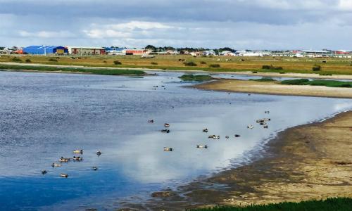 Invertirán US$4 millones para recuperar Humedal Tres Puentes de Punta Arenas