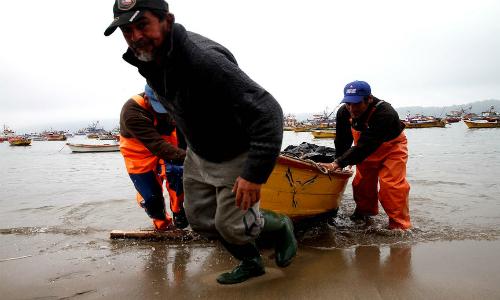 Las reacciones que generó la renuncia del subsecretario de Pesca y Acuicultura