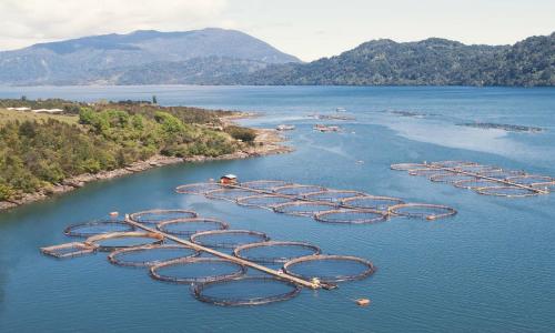 Firman acuerdo para generar un sistema de información sobre pesca, acuicultura y cambio climático