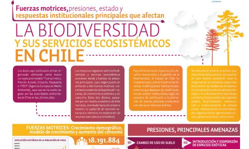 ¿Cómo es el panorama de la Biodiversidad en Chile?