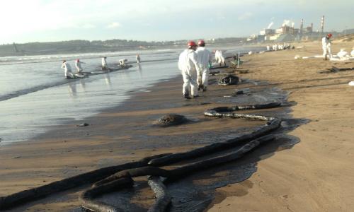 Piden castigar con cárcel a responsables de delitos ambientales
