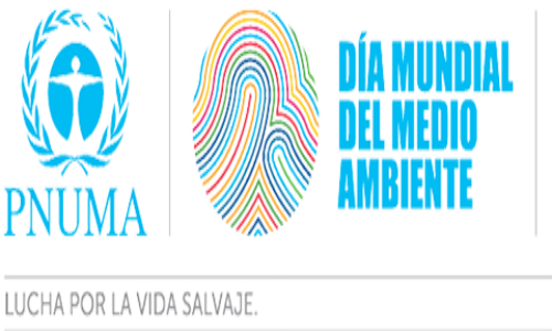 Solo dos eventos contabilizados por la ONU en Chile