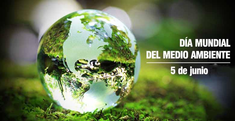 Historia del Día del Medio Ambiente: Desde sus inicios en 1974