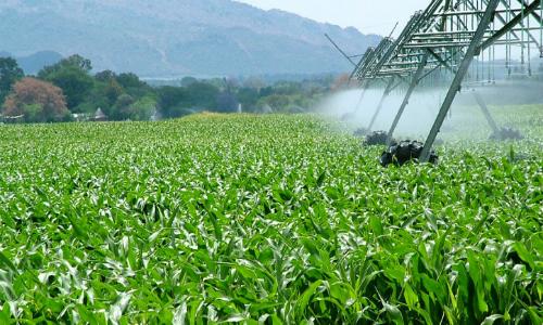"""""""Las condiciones con las que se creó la agricultura convencional cambiaron... antes no se pensaba en el cambio climático"""""""