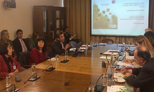 Presidente del Consejo de Política Forestal expuso ante Comisión de Agricultura