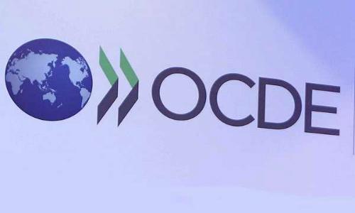 Empresa Criolla Denuncia Posible Incumplimiento Ambiental de Chile ante la OCDE