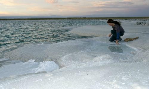 Comisión investigadora observó deterioro y fragilidad de los ecosistemas del Salar de Atacama