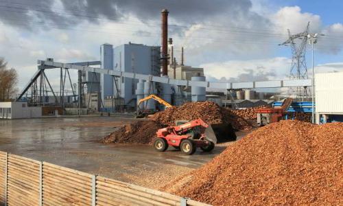 Alcaldesa de Coelemu rechaza llegada de planta de bioenergía