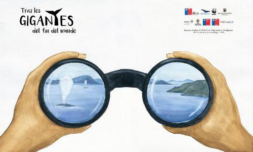 Libro infantil invita a conocer las grandes ballenas del sur de Chile