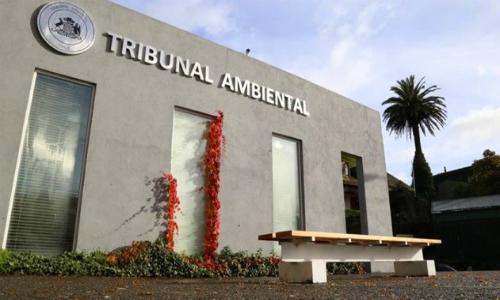 Los Ríos: Tercer Tribunal Ambiental no llega a acuerdo por centros de engorda de salmones