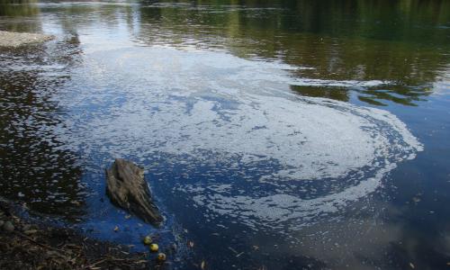 Medio Ambiente constatará en terreno nueva descarga en estero