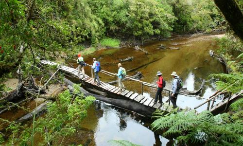 Presentan a evaluación ambiental central hidroeléctrica de pasada en río Chaica
