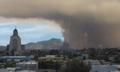 Flora y fauna destruida por incendio forestal en Maipú tardaría 50 años en ser recuperada