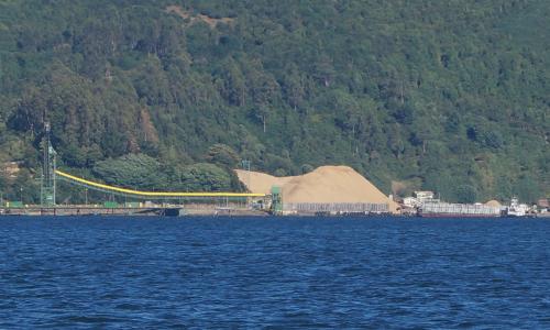 En Puerto de Corral exportan 768.000 toneladas de astillas verdes
