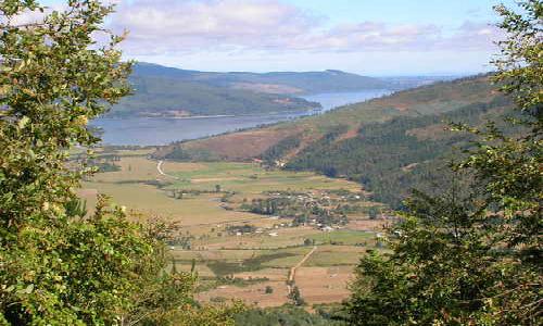 Contulmo: mapuche piden a la justicia impedir inicio de obras de hidroeléctrica Gustavito