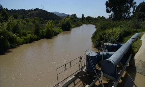 Fiscalía instruye a Brigada Medioambiental de la PDI iniciar investigación