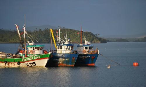 Tomas de pescadores en distintos puntos de Melinka complica a salmonicultores