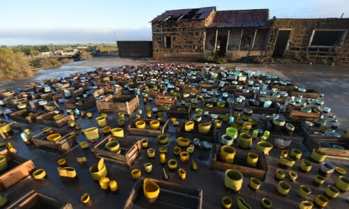 """""""Plan de cierre"""", la muestra artística que resignifica los residuos de los relaves mineros"""