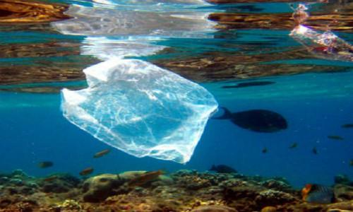 Prohibirán uso de bolsas plásticas en todo Chile