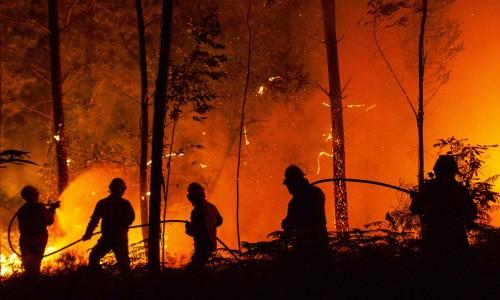 Más de 60 muertos y 62 heridos en un incendio forestal en Portugal