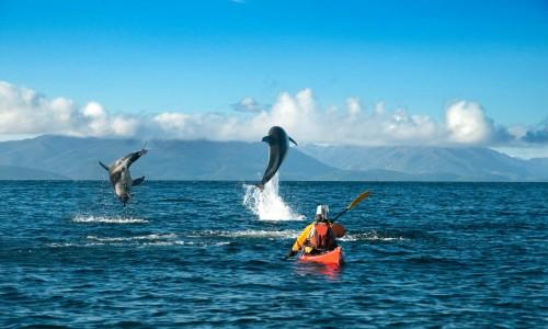 Consejo para la Sustentabilidad aprobó creación de dos nuevas áreas protegidas en Los Lagos y Magallanes