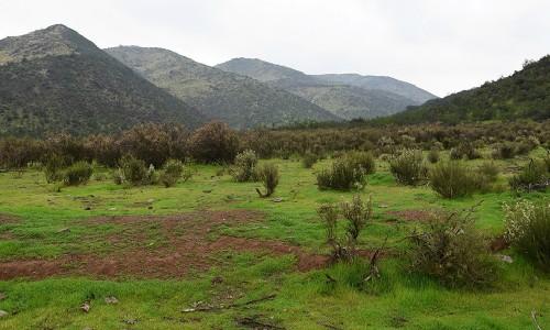 Inauguran nuevo Santuario de la Naturaleza en Quebrada de La Plata