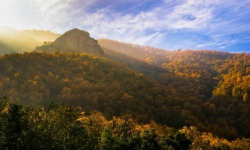 Consejo de Ministros aprueba creación de Santuario de la Naturaleza Cerro Poqui en O'Higgins