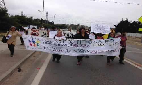 Cónclave reunió a 20 organizaciones para unir fuerzas en la defensa del medioambiente