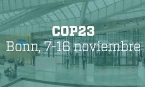 ONG's reconocen avances en la COP23, pero alertan de la tarea pendiente