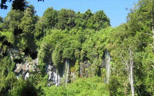 Destrucción de bosque nativo y humedales acentúa escasez de agua que afecta hace 5 años a Chiloé