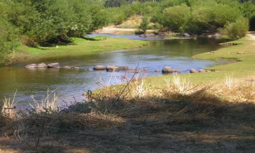 Concejal denuncia abrupta bajada del cauce en río Traiguén