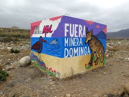 Tribunal Constitucional acoge a trámite recurso contra proyecto minero Dominga