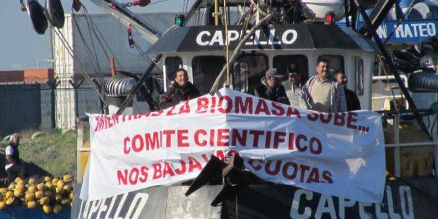 """Pescadores artesanales: """"Nuestro sector está apremiado por baja de cuotas"""""""