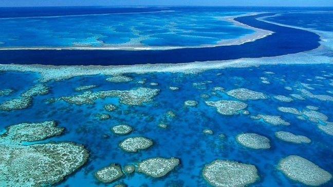 Arrecifes de Belice son retirados de lista del patrimonio en peligro de la UNESCO