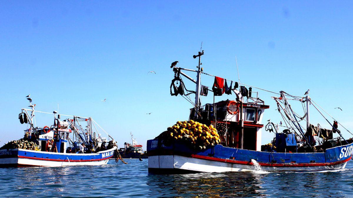 Adaptación al cambio climático y redefinición de cuotas son algunas oportunidades de la Ley de Pesca planteadas por la FAO