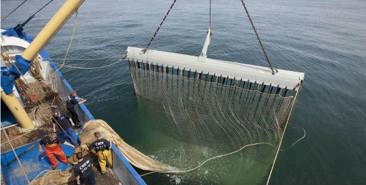 Hoy: pescadores y ambientalistas se movilizan en Europa en contra de la pesca eléctrica