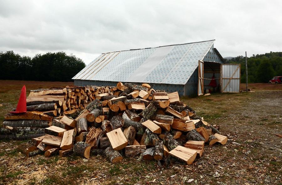 Aysén: bono para comprar leña seca no ha servido para bajar contaminación