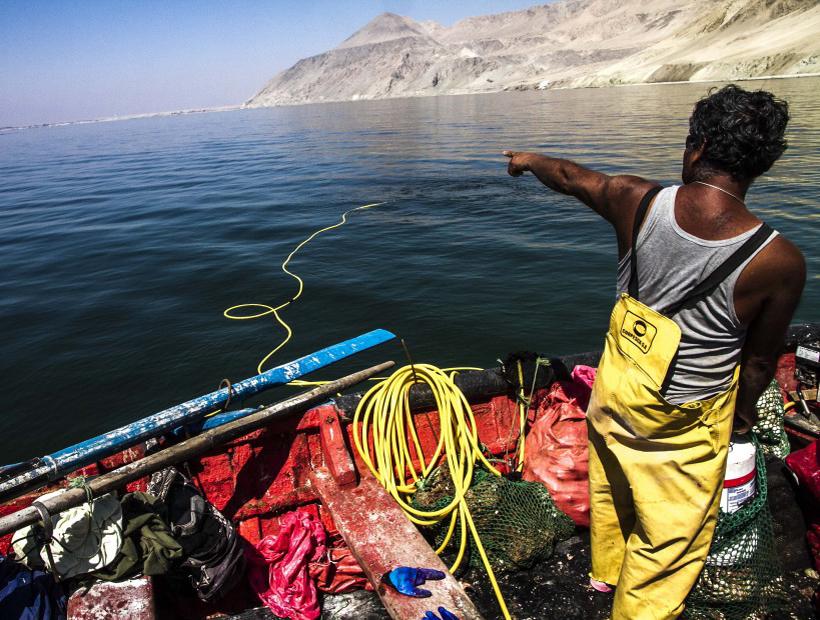 Pescadores preparan acciones legales en contra los responsables de la contaminación en Mejillones