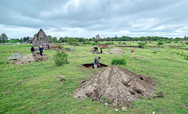 Caso Monte Verde: Tribunal Ambiental rechaza daño de empresa de redes