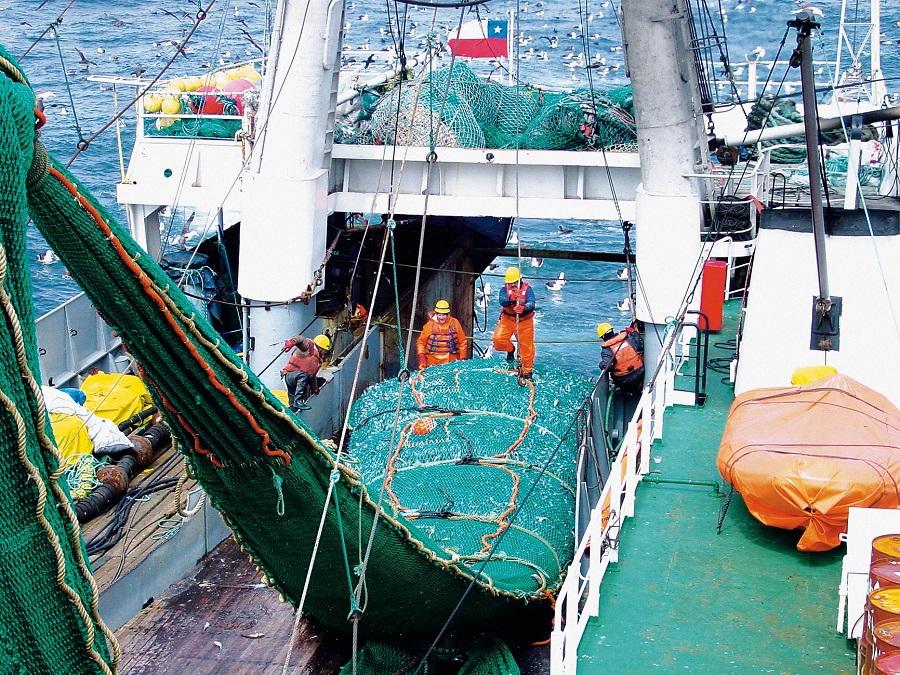 Producción mundial de pescado en 2016 fue de 171 millones de toneladas