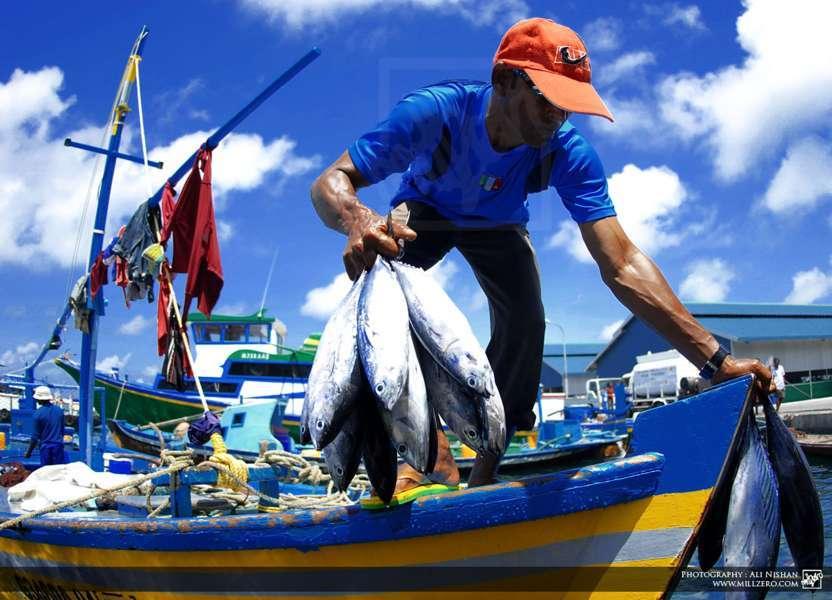 """Artesanales piden una ley de pesca """"justa y democrática"""""""