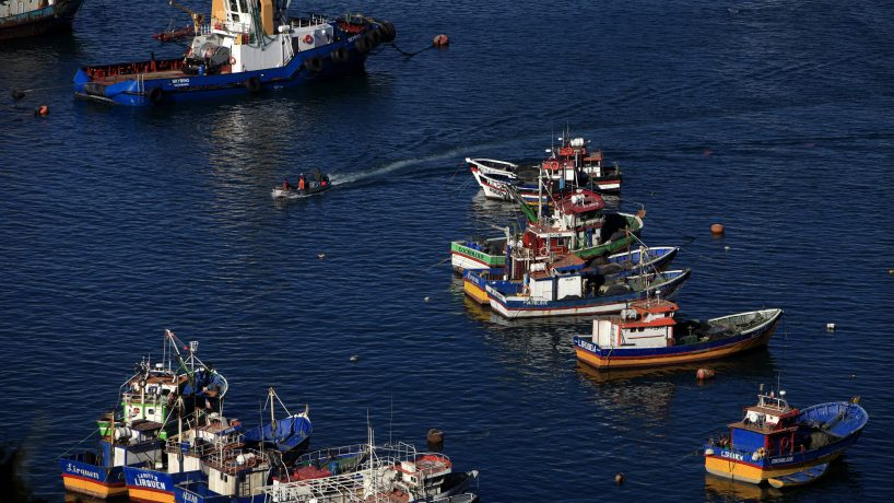Presentan cinco medidas para combatir la pesca ilegal
