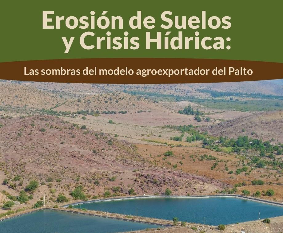 Estudio analiza la erosión de suelos y la crisis hídrica como impactos del cultivo de paltos en Chile