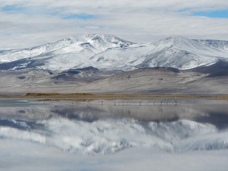 """Consejo de ministros aprueba la creación del Parque Nacional """"Salar de Huasco"""""""