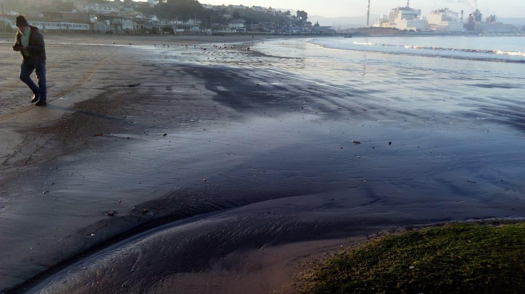 Contaminación: Varamiento de carbón tiñó la playa de Ventanas nuevamente