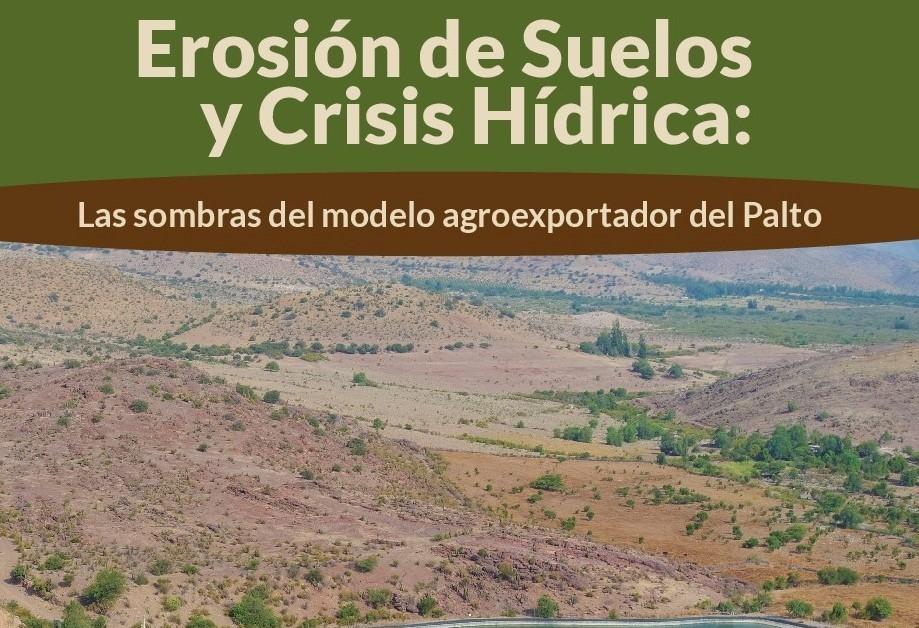 Erosión de suelos y crisis hídrica: las sombras del modelo agroexportador de palto