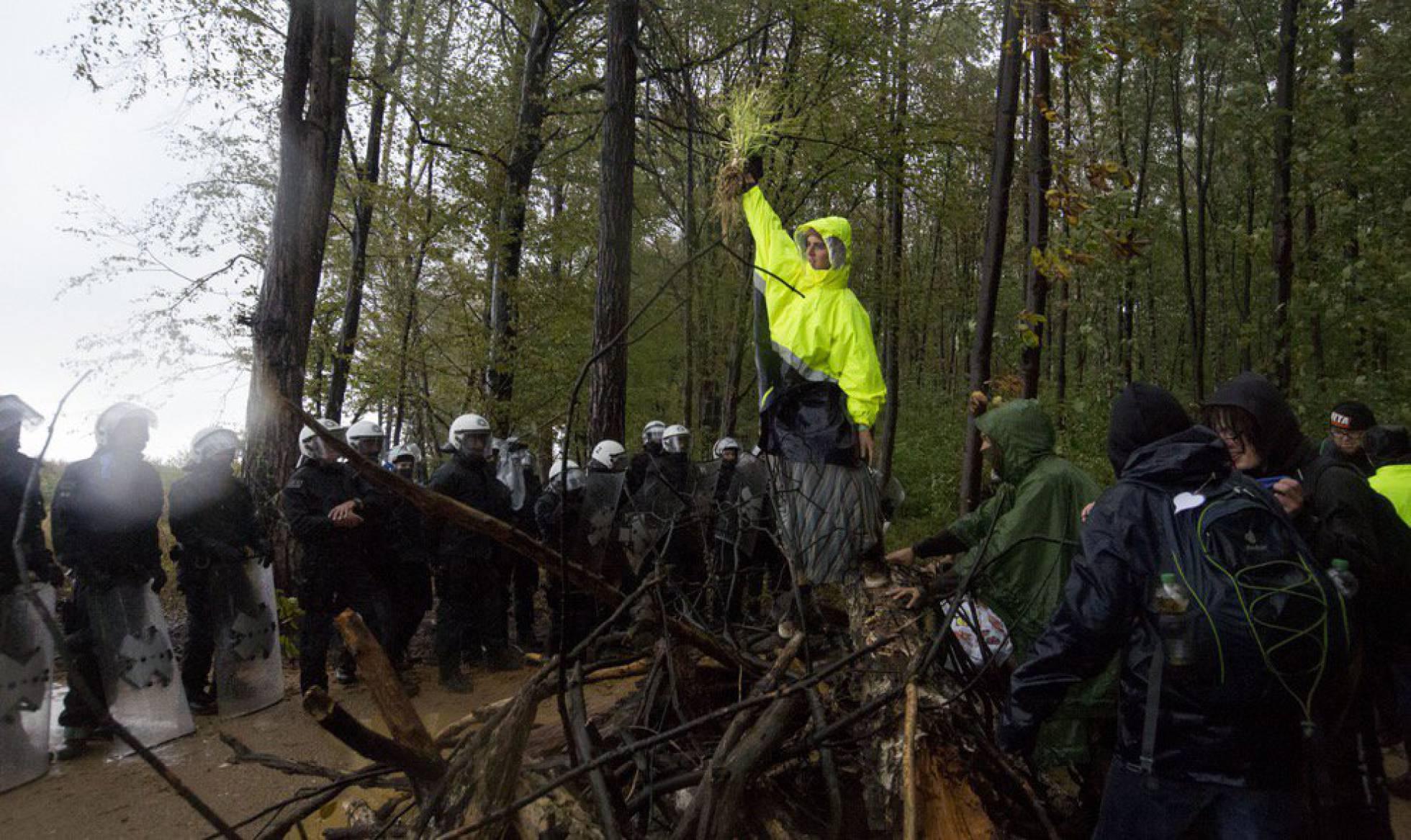 Alemania detiene la tala del bosque de Hambach