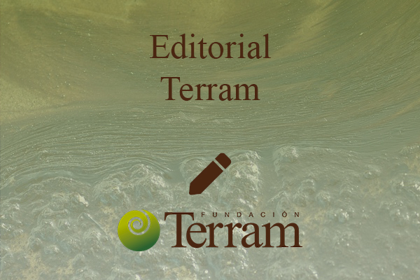 Derrame de petróleo: la necesaria tipificación de los delitos ambientales
