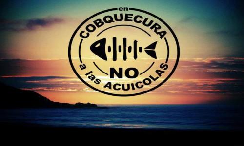 Cobquecura: La lucha del litoral del Ñuble por evitar la instalación de ocho proyectos salmoneros