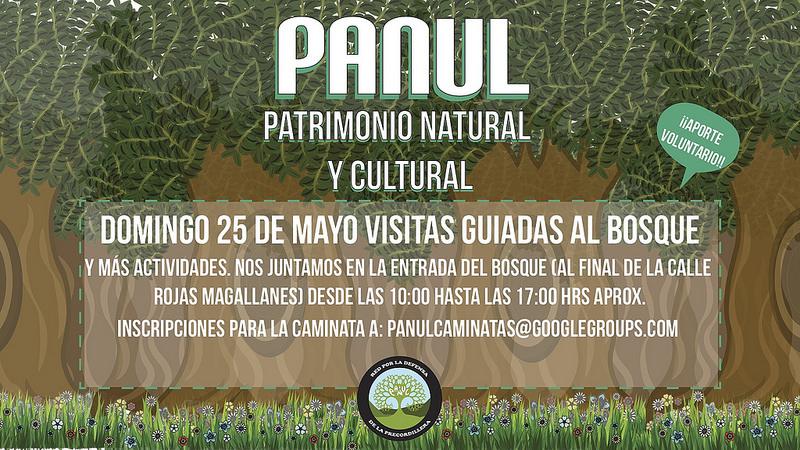 Panul Patrimonio Natural Y Cultural Biodiversidad